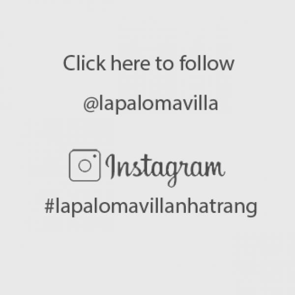 instagramthem